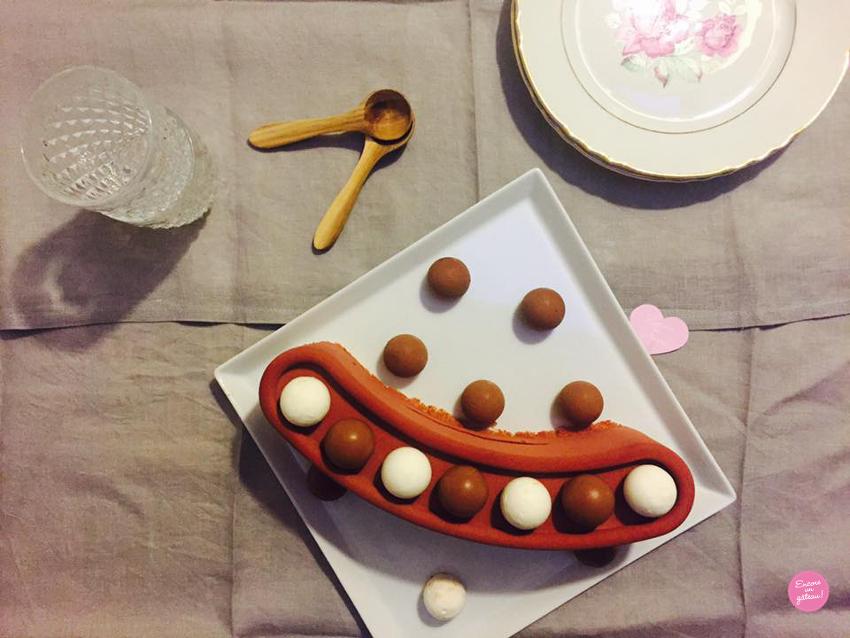 chocococo entremets chocolat noix de coco