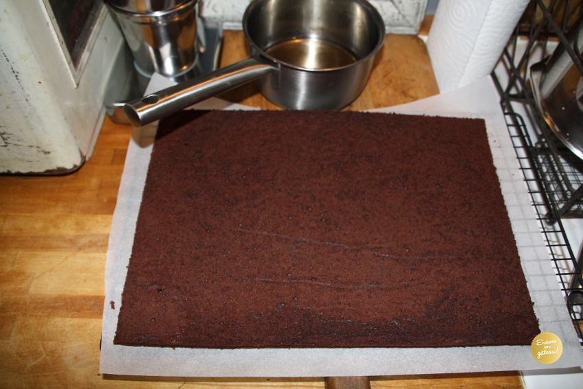 bûche chocolat praliné biscuit chocolat