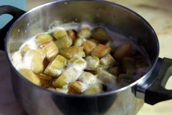 cuisson rhubarbe pour sorbet rhubarbe fraises