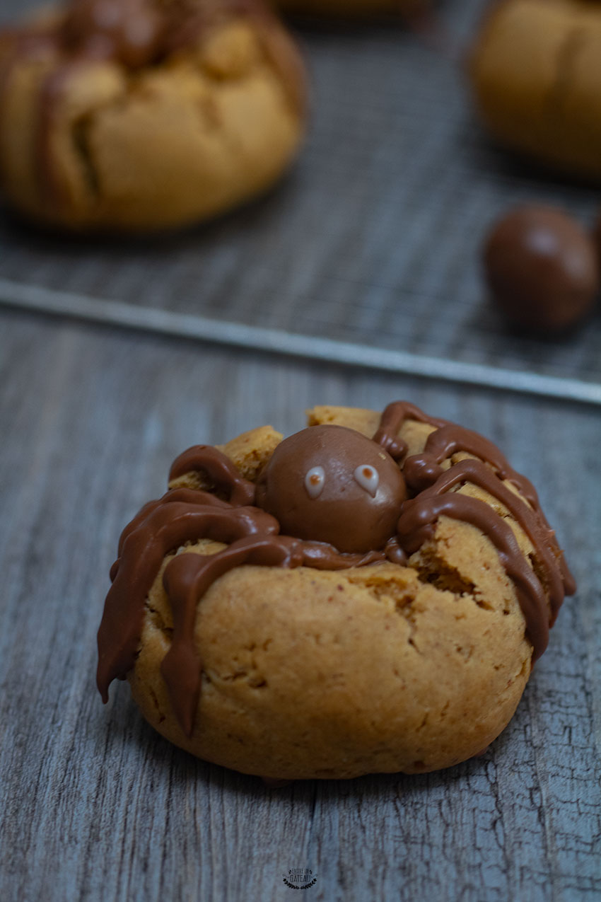 biscuits araignées faciles