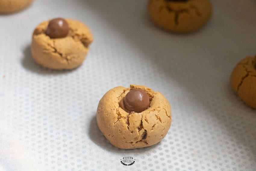 biscuits araignées maltesers