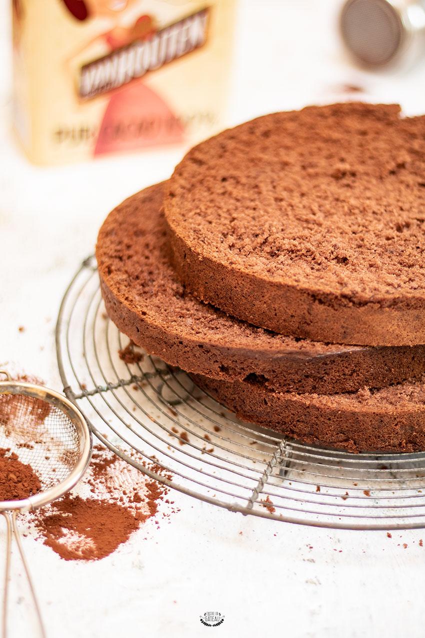 recette génoise au chocolat ou cacao