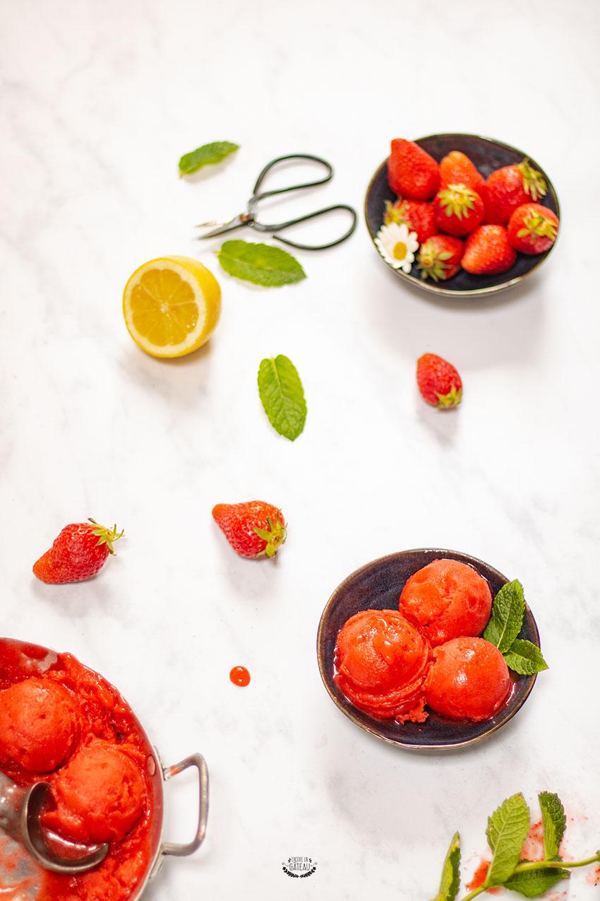 recette facile de sorbet à la fraise maison