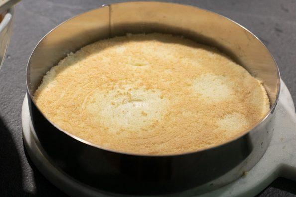 biscuit entremets praliné
