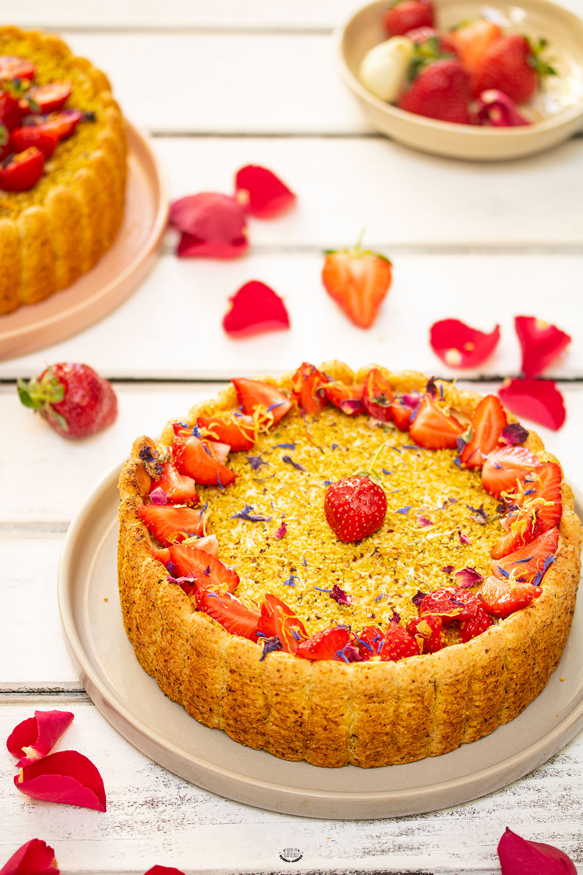 charlotte pistache fraise